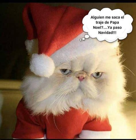 imagenes navideñas grasiosas arbol de navidad gracioso buscar con google humor y