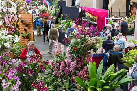 Show Plants For Garden Find Out About Rhs Shows 2018 Rhs Gardening