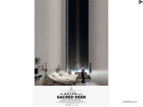 killing   sacred deer  wallpaper