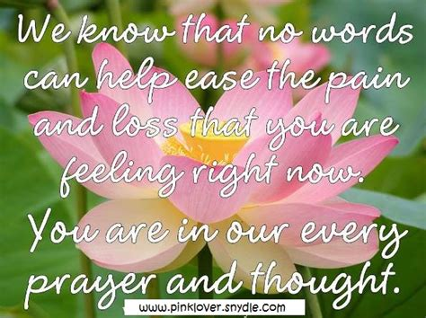 condolence quotes sympathy card messages quotes and sayings pink lover