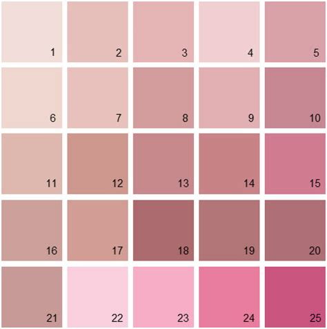 benjamin paint colors pink palette 10 house