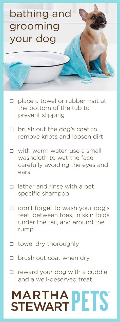 7 Tips On Grooming Your by Martha Stewart Pets Tips On Bathing And Grooming Your