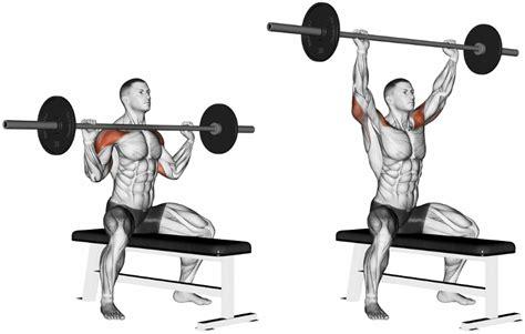 shoulder press diagram press the most important exercise for shoulders
