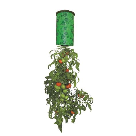 Topsy Turvy Tomato Planter by Ace Hardware Topsy Turvy Tomato Planter Mojosavings