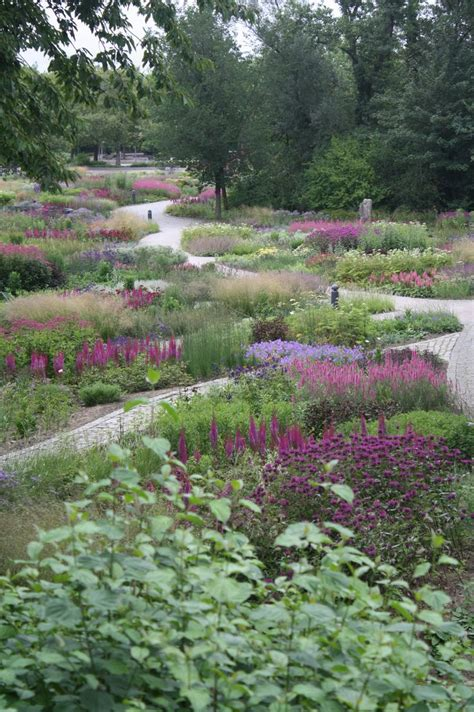 75 best images about piet oudolf james van sweden wolfgang oehme on pinterest gardens