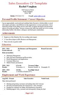 Executive Cv Templates by Sales Executive Cv Template 1