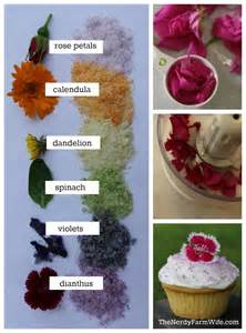 how to color sugar naturally colored decorating sugar using edible flowers