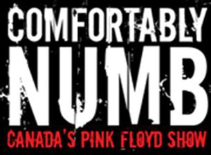 play comfortably numb by pink floyd comfortably numb canada s pink floyd show tickets