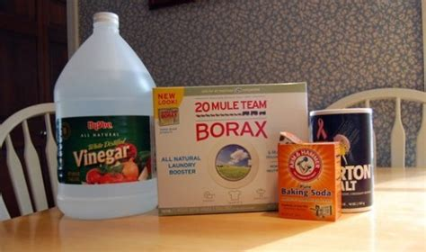 get rid of basement smell how to get rid of musty basement smells dengarden