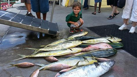 party boat fishing west palm beach fl west palm beach fishing charters fl boynton beach sea