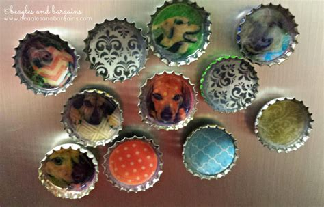 diy bottle cap magnets how to make diy bottle cap magnets featuring your pets