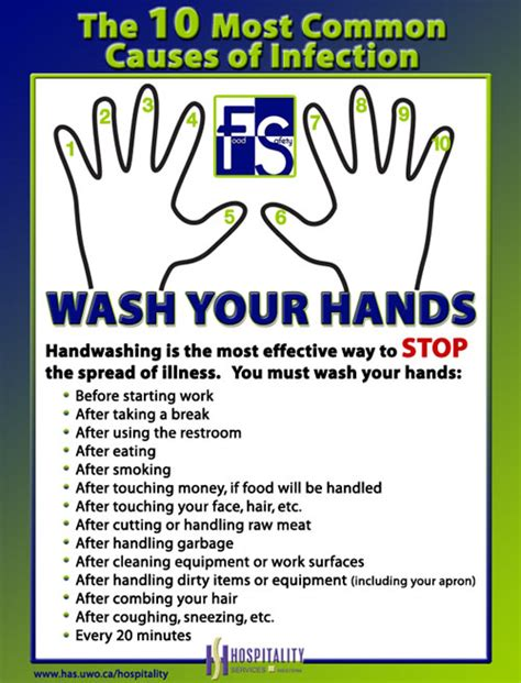 is it ok to wash your hair before coloring it handwashing staff site hospitality services at western