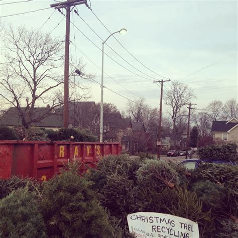 fundraiser by renee sweany christmas tree recycling in indy