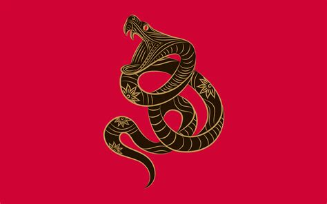 chinese zodiac snake wallpapers chinese zodiac snake