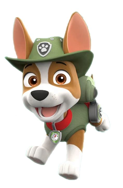 what of is tracker from paw patrol tracker paw patrol wiki fandom powered by wikia