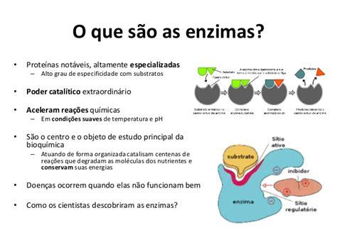 proteinas y enzimas enzimas