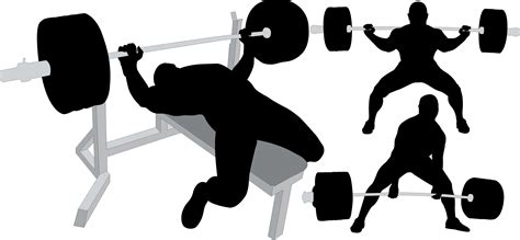 squat bench deadlift white lights gear the importance of programming by