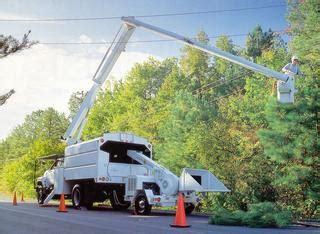 ellason tree service simpsonville sc 29681 864 967 8346
