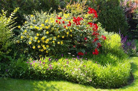 plantes 224 massif jardinage