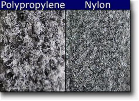 Which Carpet Is Better Wool Or Polypropylene - polypropylene carpet vs carpet floor matttroy