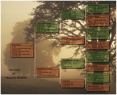 Amazon Com Family Tree Maker For Mac 2 Old Version Ancestry Book Templates