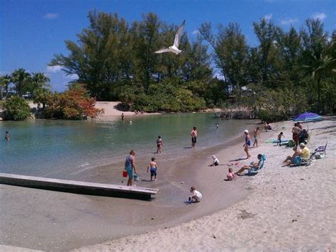 boat tours near jupiter florida the top 10 things to do near jupiter inlet lighthouse museum
