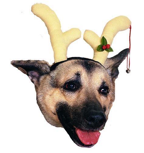 top 28 pet reindeer antlers pet reindeer antler hats