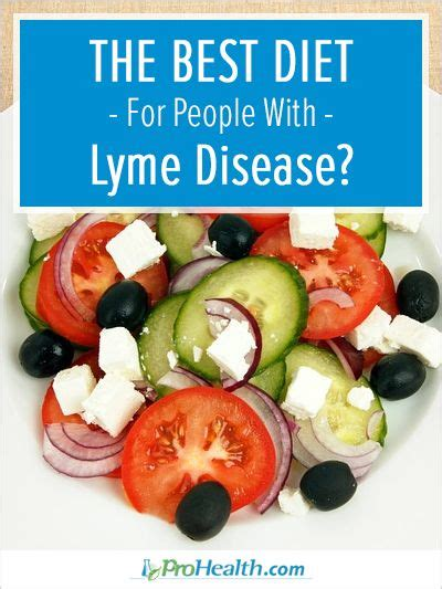 Lyme Disease Detox Diet by 17 Best Ideas About Mosquito Disease On