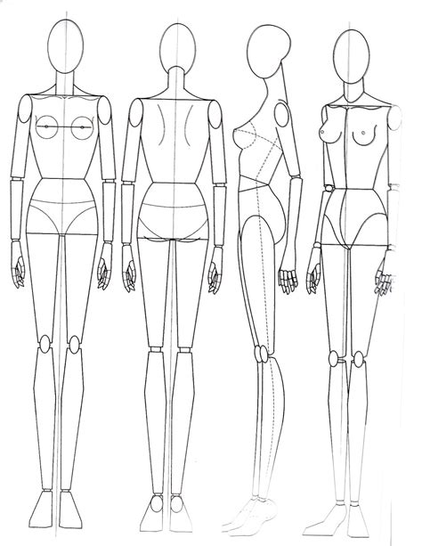 sketch of human body front and back sketch templates