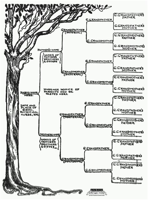 free family tree printable template blank family tree template in history