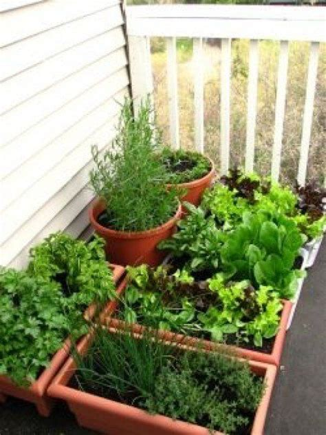 balcony garden containers 10 pinteresting teach us how to grow a vegetable garden