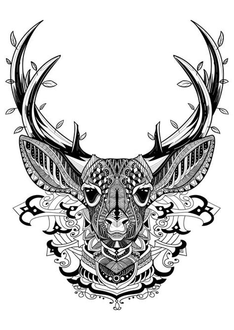 deer coloring page for adults 21 best dear coloring pages images on pinterest deer