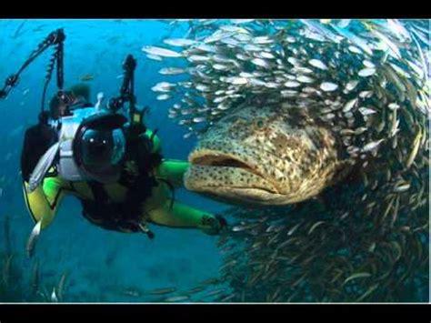 ver imagenes sorprendentes del mundo paisajes sorprendentes wmv youtube