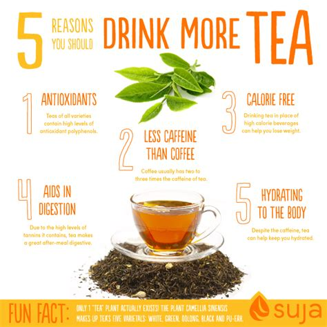 to health with herbal tea drink to a healthier books benefits of tea 5 reasons to start sipping now