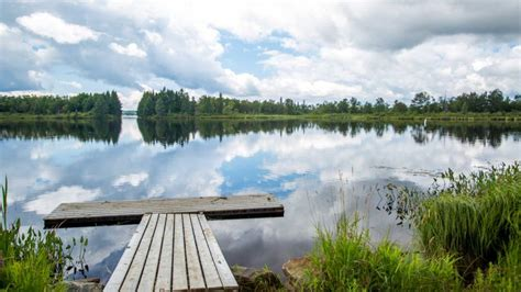 paddle boat rentals deer lake park sun rv resorts