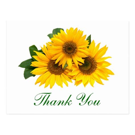 Sunflower Thank You Cards