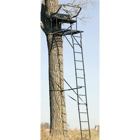 tree stand big 174 the partner pro 18 ladder tree stand 193067