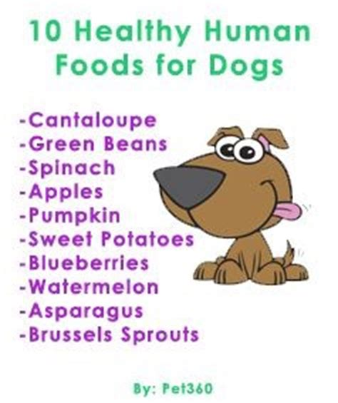human food for puppies 22 likes 23 saves