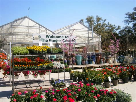 Garden Center San Antonio by About The Garden Center Garden Center Nursery San Antonio
