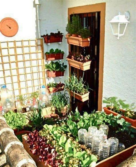 home garden vegetables ideas vegetable small home garden garden ideas