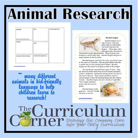 17 best images about animal research project on pinterest