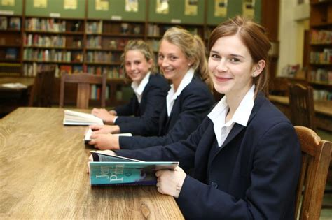 what is the best shoo for yorkies 37 best images about find an independent school on