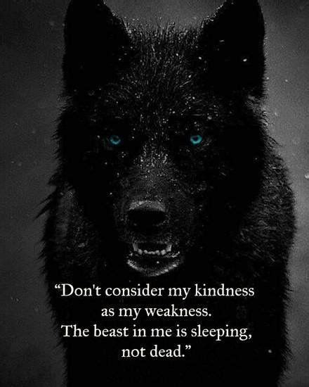 How To Get Rid Of Bad Spirits Inside You 25 best wolf quotes on pinterest warrior quotes mother
