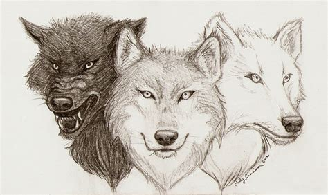 wolf tattoo lineart by emilycammisa on deviantart