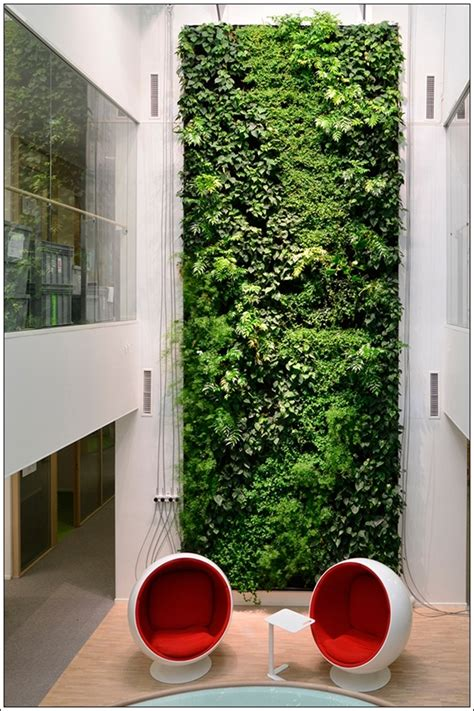 indoor vine vine covered walls