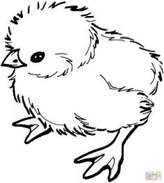 chicken coloring pages baby coloring page free printable coloring pages