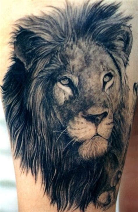 lion tattoo on pinterest lion tattoo quot every king quot possible tattoos pinterest
