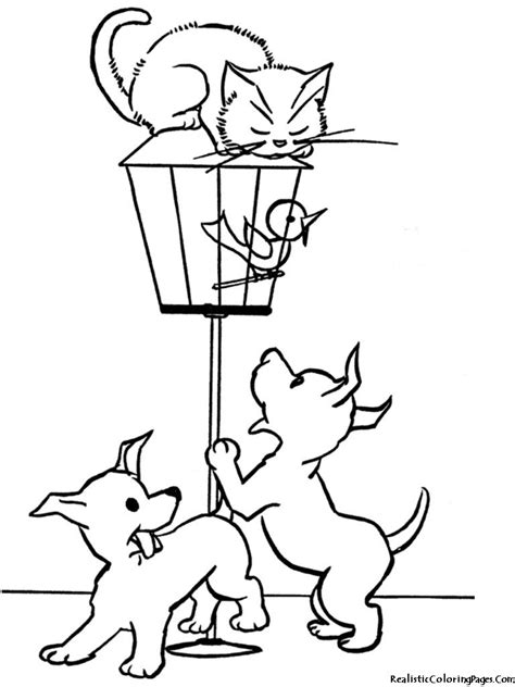 cat  dog realistic coloring pages coloring pages