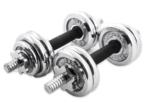 Dumbell 15kg chrome dumbbell set 15kg lazada singapore