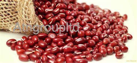Adzuki Bean 100 Gr adzuki beans small adzuki beans new crop adzuki beans products south africa adzuki beans